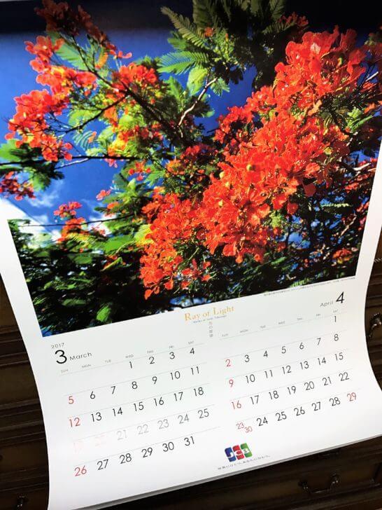 JCBオリジナルカレンダー2017(3・4月)