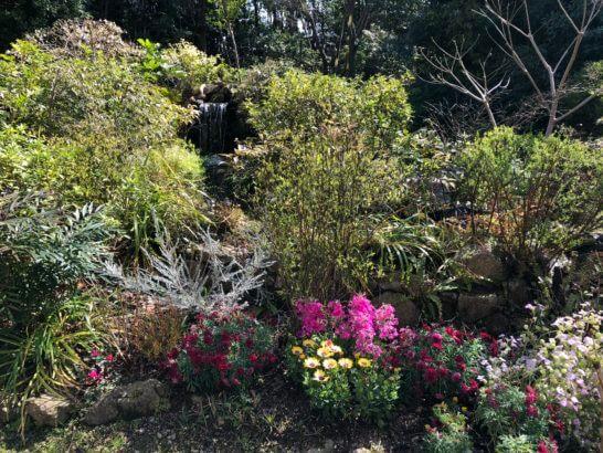 ウェスティン ガーデンの緑と花