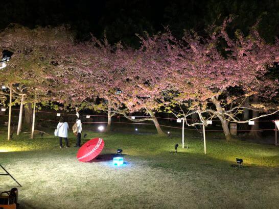 醍醐寺の憲深林苑