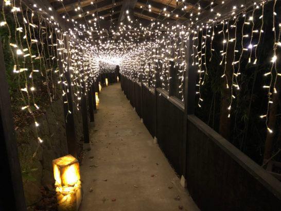 箱根吟遊のスパに行く通路(夜のライトアップ)