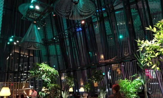夜のアメックスの銀座ラウンジ(THE GREEN Cafe American Express × 数寄屋橋茶房 ) (2)