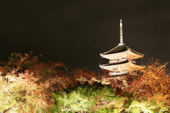 京都の世界文化遺産「東寺」の夜間ライトアップ