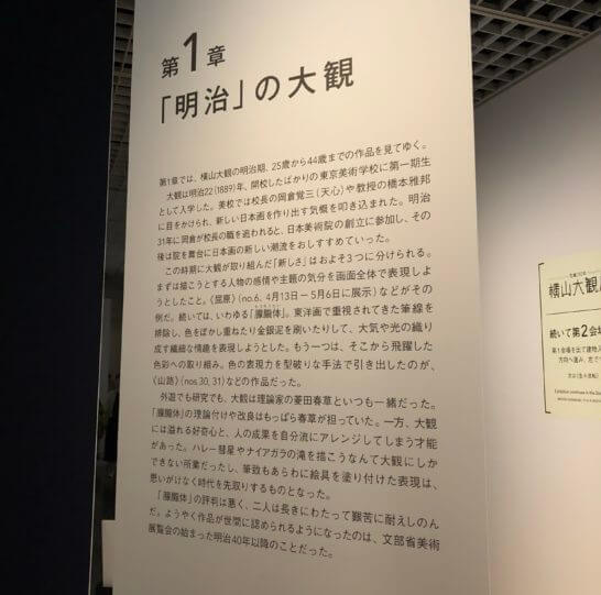 東京国立近代美術館の企画展の解説文書