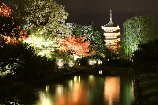 秋の世界文化遺産「東寺」の夜間ライトアップ