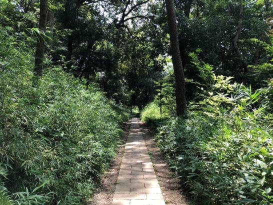 有栖川宮記念公園の道 (1)