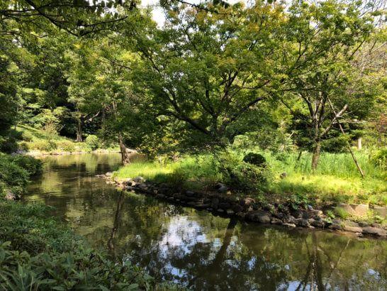 有栖川宮記念公園の緑