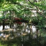 ホテルニューオータニの日本庭園