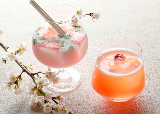 桜カクテル