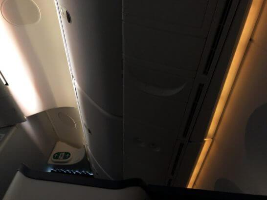 ANAビジネスクラスで寝たシーン(天井)