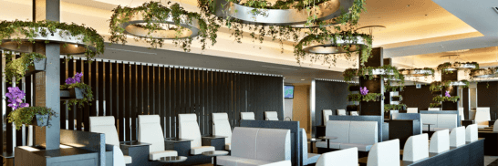 ANA SUITE LOUNGE(THE PARK)