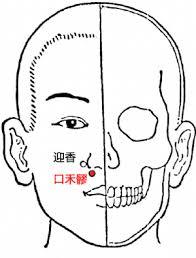 ツボ生活のススメ35 (禾膠)