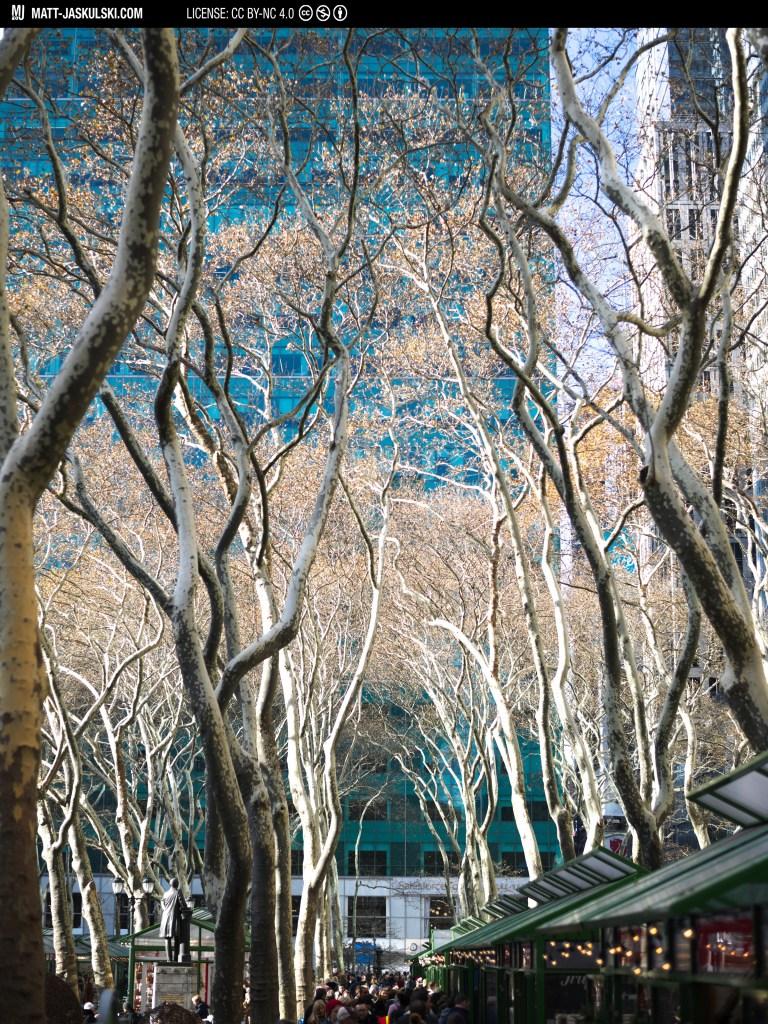 city cityscape color colour d800 nature newyork newyorkcity Nikon nikonphotography nyc street streetphoto trees urban
