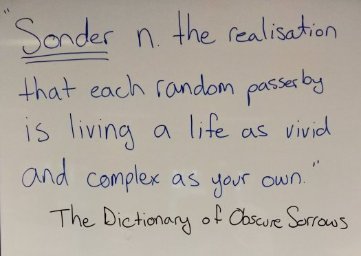 """""""Sonder n. the realization that each random passerby is living a life as vivid and complex as your own"""" The Dictionary of Obscure Sorrows"""