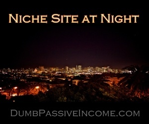 Niche Site at Night