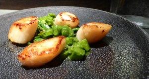 Scallop, apple, sea veg, oyster