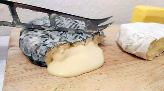 Blue Slipper cheese