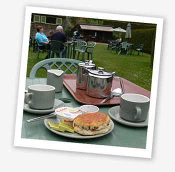 Cream tea at Mottistone Manor