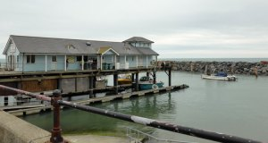 Ventnor Haven Fishery
