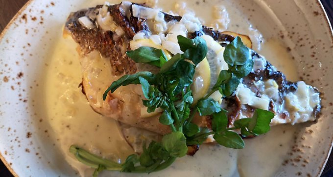 Grilled sea bass fillet