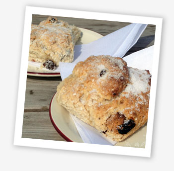 The finest rock cakes on the Isle of Wight