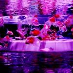 「アートアクアリウム 」2016東京日本橋の開催はいつ?混雑を避ける3つのポイント