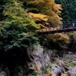 静岡県三島市の大つり橋!場所や値段について