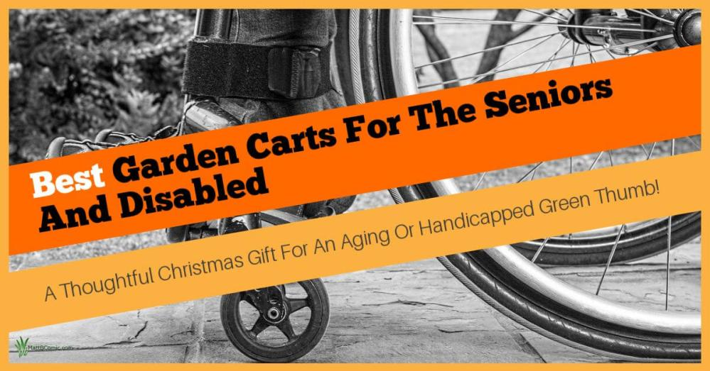 Top Utility Wagons For The Elderly And Handicapped Featured Image