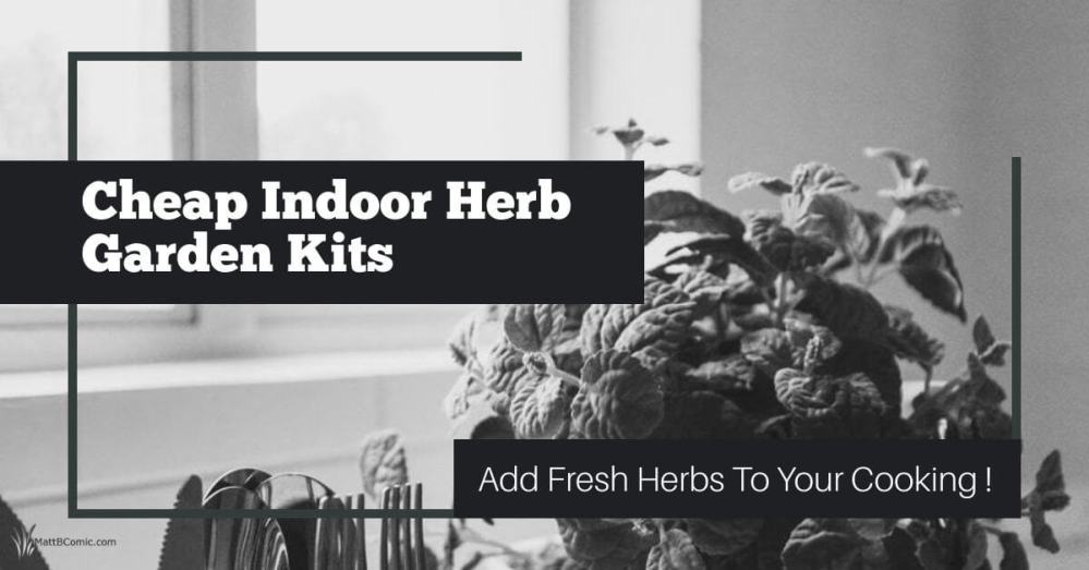 Cheap Indoor Herb Garden Kits Featured Image