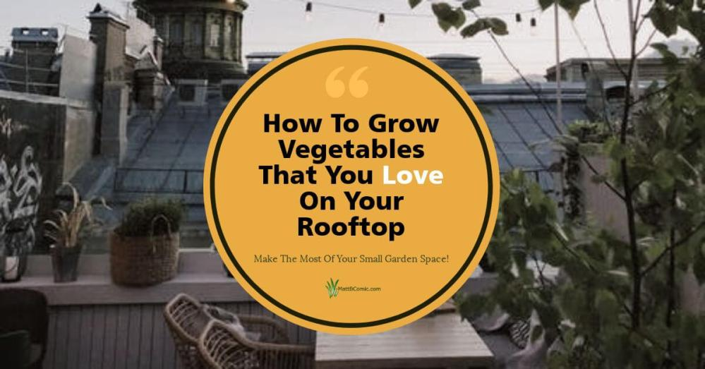 Rooftop Container Vegetable Gardening Featured Image
