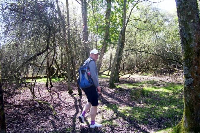 Making a trek