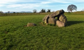 Upright stones at Giant's Ring.