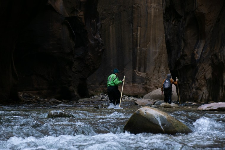 Picture of hikers making their way through the Zion Narrows - Zion National Park