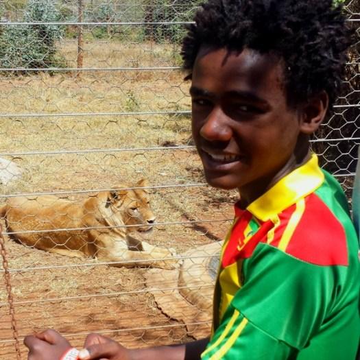 Weldu and a lion