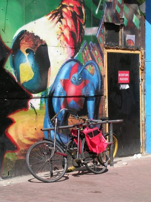 red saddlebag