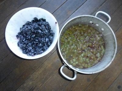 prepping Niabell grapes