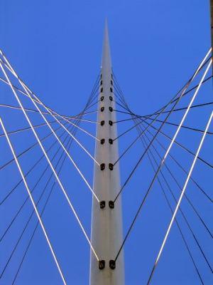 Calatrava bridge at Nieuwe Vennep
