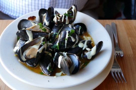 Steamed mussels drizzeled with aioli