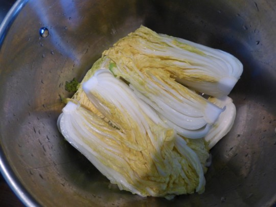 Brined nappa cabbage