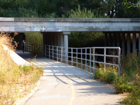 Lynch Creek Trail under 101