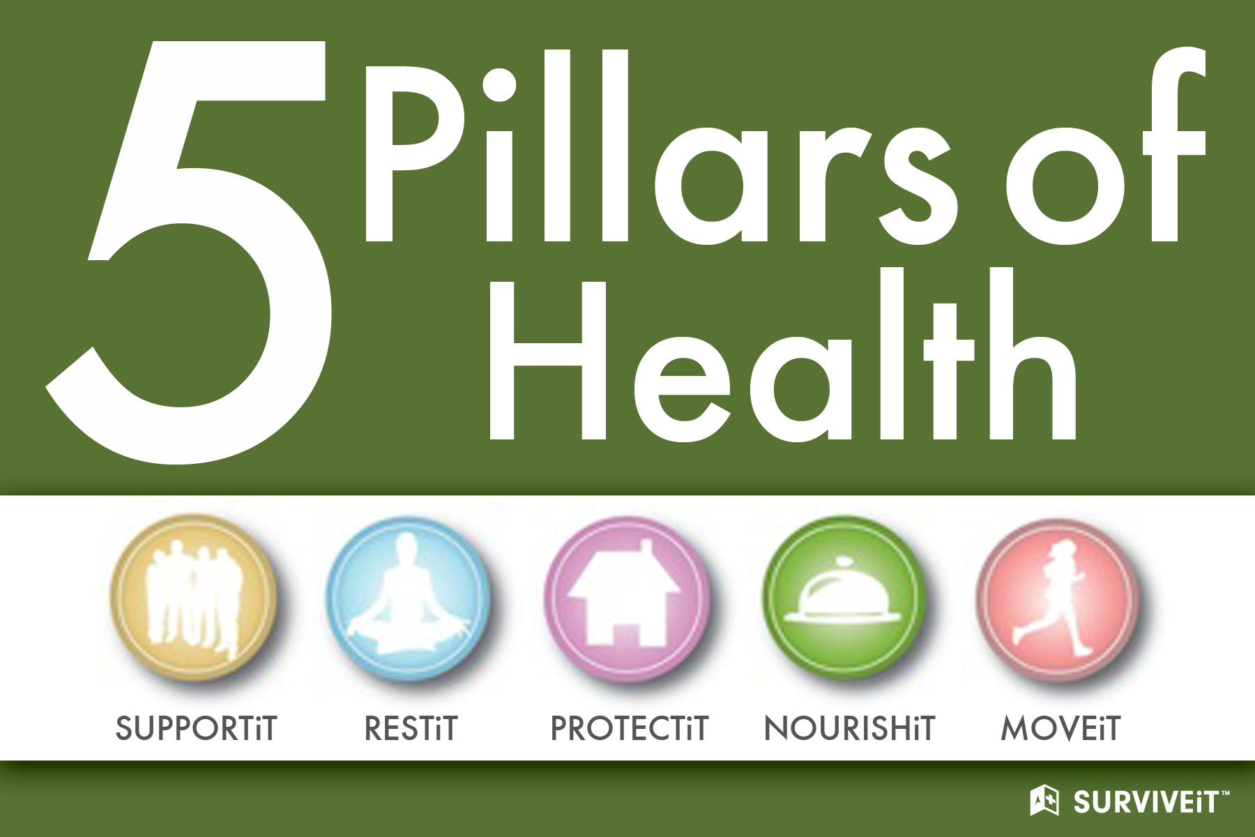 Surviveit S Five Pillars Of Health