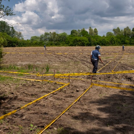 Some Norwegian People's Aid deminers are seen working on mine clearance operations. They need to work maintaining a safe distance of at least 15 meters between them. Brčko, Brčko District, Bosnia and Herzegovina, 2014.