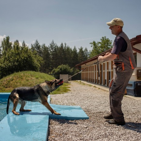 """The dog trainer Mujo Buljubašić helps a Belgian Shepherd dog to get out of the swimming pool holding him with his favorite toy. At the """"Global Training Center for Mine Detection Dogs"""" around 110 dogs work on their training everyday. Vogošća, Bosnia and Herzegovina, 2014."""