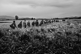 A column of Syrian asylum seekers on the way through cultivated fields about a kilometer from the border between Greece and the Republic of North Macedonia. Evzoni, Greece 2015. © Matteo Bastianelli