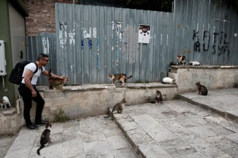 39-year-old Ibrahim Shehabi plays with some cats on the street. In jail in Aleppo, where he was detained and tortured for 30 months, prisoners suffered physical torture plus they only had a loaf of bread and two liters of water a month. Many of his fellow inmates died of hunger and hardship, as did a cat who managed to sneak into the prison. Istanbul, Turkey 2016. © Matteo Bastianelli