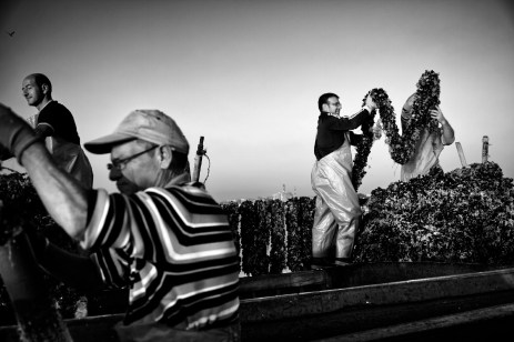 Luciano Carriero, mussel cultivator, together with his work-team in the Small Sea. Due to the presence of dioxin in the mussels over the past two and a half years he is forced to throw his harvest away. Taranto, Italy 2013. © Matteo Bastianelli
