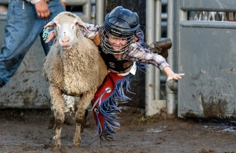 Six-year-old Hunter Heezen of Wessington Springs is unable to hang on to the sheep during the mutton bustin' portion of the Wessington Springs Foothills Rodeo on Saturday, May 28 at the Jerauld County 4-H arena.