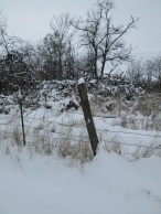 christmas, snow 20132014 065