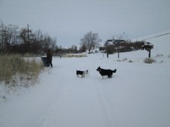 christmas, snow 20132014 066