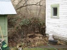 yard work 006