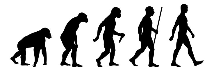 Human Evolution (Discover Magazine)